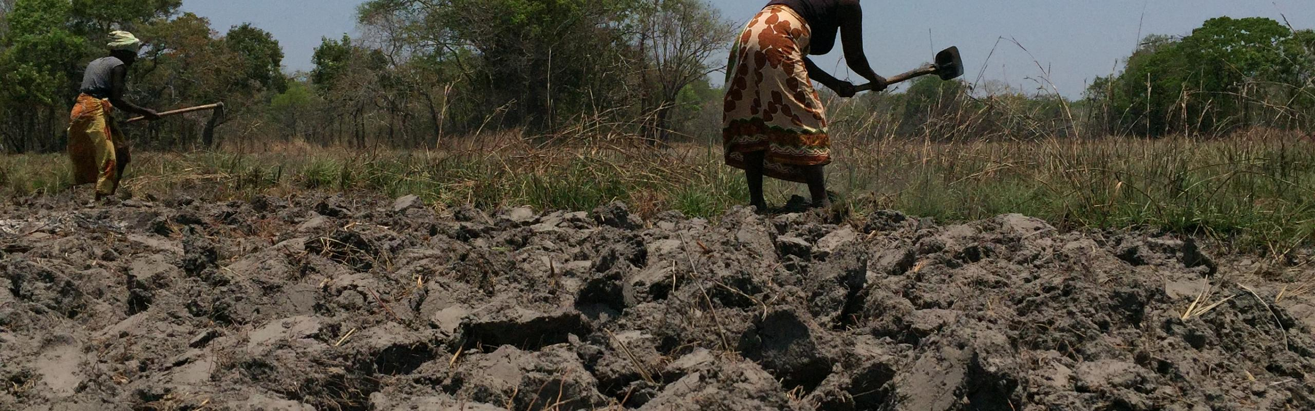 Drought in Mozambique